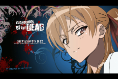 highschool-of-the-dead-rei-miyamoto-head-wallpaper