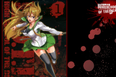 highschool-of-the-dead-saya-takagi-school-girl-wallpaper